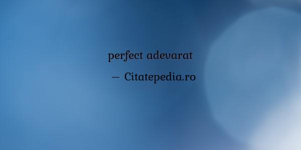 căutați omul perfect